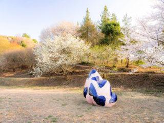 塩谷 良太 Ryota Shioya